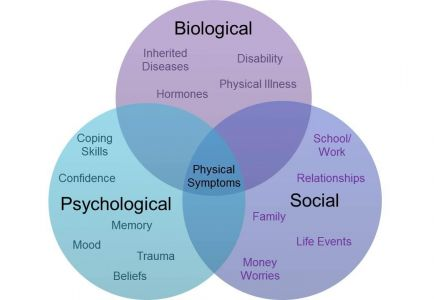 Biopsychosocial Model Venn Diagram Physical Symptoms